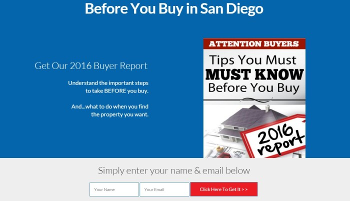 2016 Real Estate Landing Page